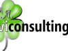 Cevi Consulting